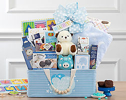 Bundle of Joy - Blue Gift Basket - Item No: 994