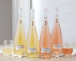 Suggestion - Cote des Roses Chardonnay and Rose - 4 Bottles
