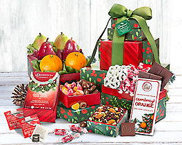 Suggestion - Premium Organic Holiday Fruit and Sweets Tower