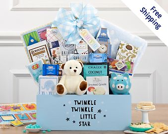 Baby gift baskets at wine country gift baskets item 507 quick look wishlist wishlist welcome home baby boy gift basket negle Image collections