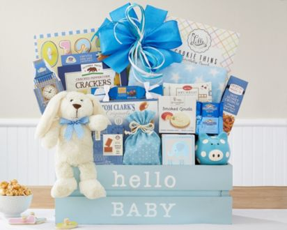 e6eafc29c9fd Welcome Home Baby Boy Gift Basket - Ship To Canada at Wine Country ...